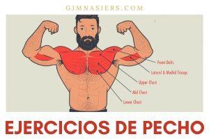 ejercicios de pecho