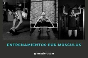 Entrenamientos por Músculos